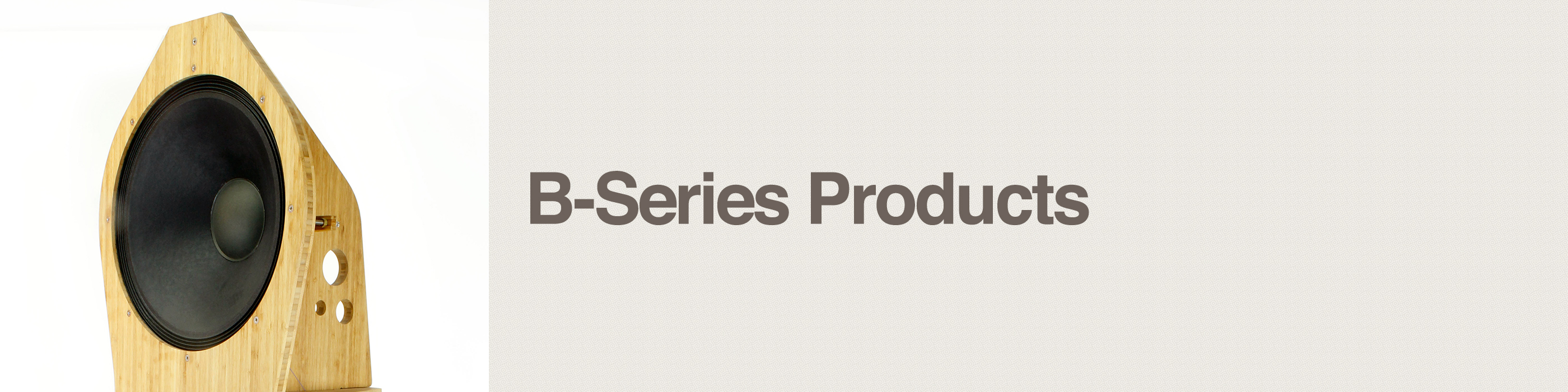 b-series products header